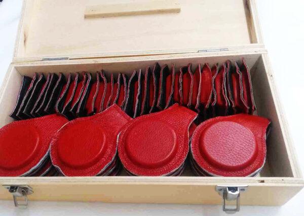 Kit de imanes para biomagnetismo. 50 piezas Estuche de madera